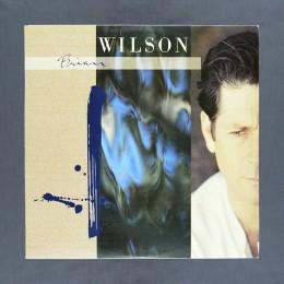 Brian Wilson - Brian Wilson - LP (used)