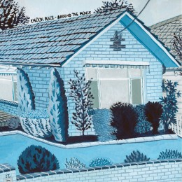 Chook Race - Around The House - LP